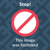 Choosing A Color Is The Hardest Part Of Painting With Wise Owl Chalk Synthesis Paint This Blog Will Focus On Top Ing And Most Adored Colors